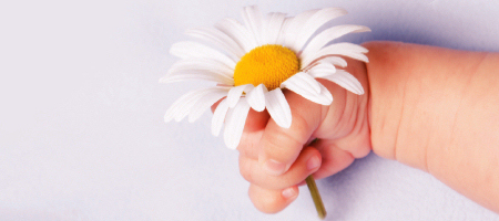 hand-with-flower